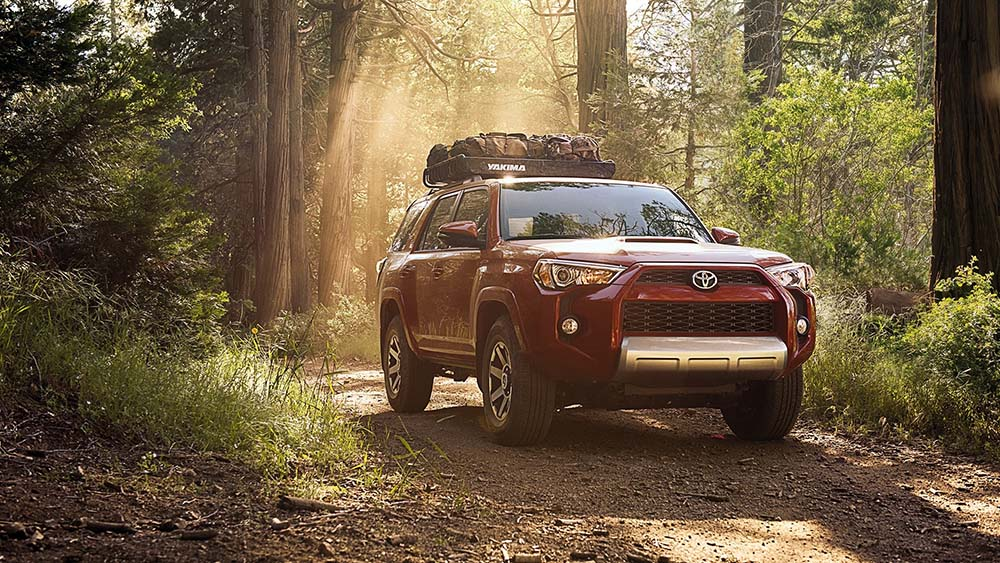 2017 Toyota 4Runner Forest