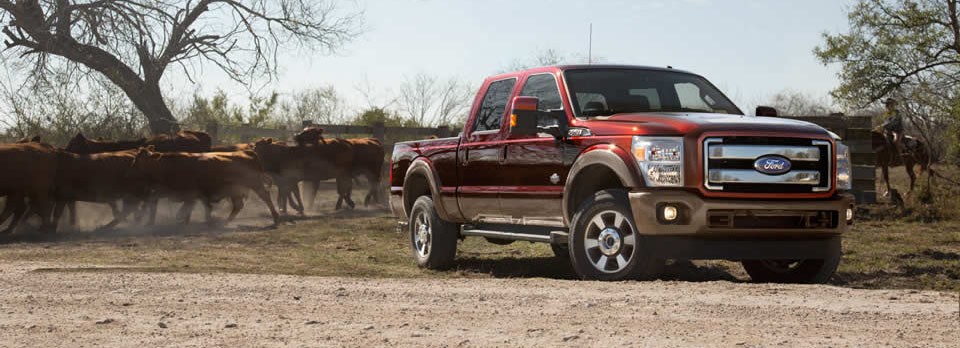2016 Ford Super Duty cattle