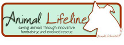 Animal-Lifeline