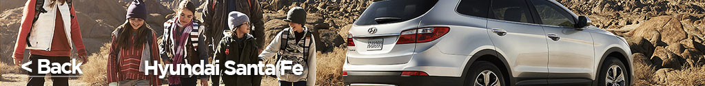 hyundai santa fe with family