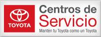 Service-Spanish