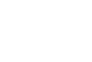 Big Cat Rescue white Logo