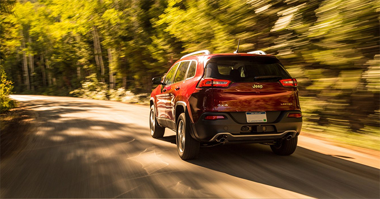2017 Jeep Cherokee Performance in Plainfield, IN